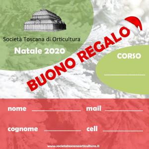 BUONI NATALE 2020 def.